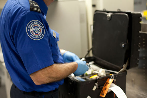 airline security essays