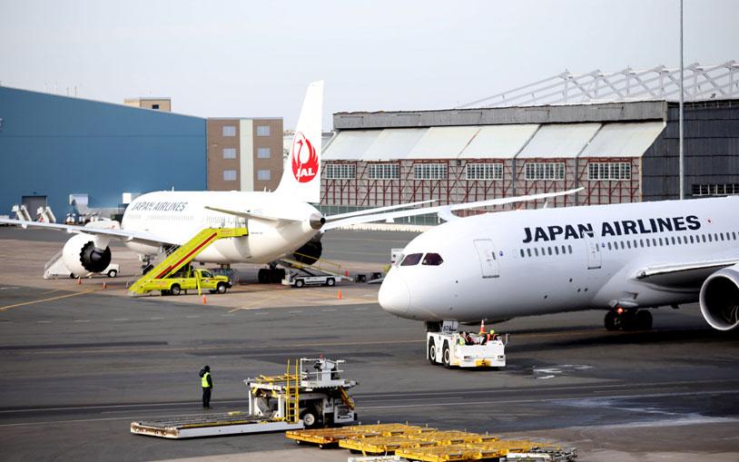 JAL & ANA 787s